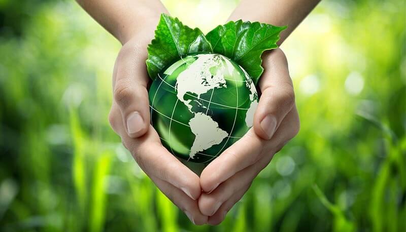mondo verde tra le mani Sistemi raffrescamento aria